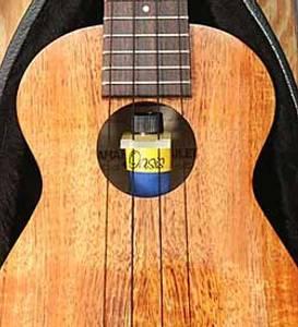 Bilde av Oasis luftfukter for ukulele
